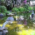 Zen Garden by Ron Potter