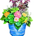 Zinnia Container Garden by Linda Williams