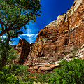 Zion Canyon by Bobby Eddins