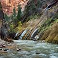 Zion Canyon by Erika Fawcett