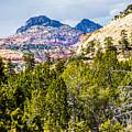 Zion Canyon National Park Utah by Alex Grichenko