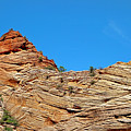 Zion Checkerboard Formations by Robert Meyers-Lussier
