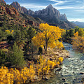 Zion Fall Foliage by Gigi Ebert