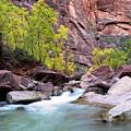 Zion In The Fall Utah Adventure Landscape Art By Kaylyn Franks by Kaylyn Franks