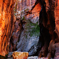 Zion Narrows With Boulder by Alan Socolik