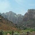 Zion National Park 3 by Jocelyn Eastman