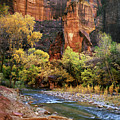 Zion National Park 57 by Fred Newman