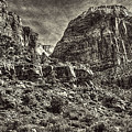Zion National Park II by Roger Passman
