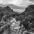 Zion National Park In Black And White  by John McGraw