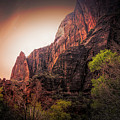 Zion National Park Usa  by Chuck Kuhn