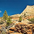 Zion National Park Vista by Allan Einhorn