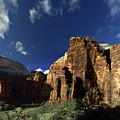 Zion Panorama by Lawrence Drake
