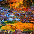 Zion Subway Falls by Greg Norrell