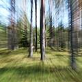 Zoom Photo by Esko Lindell