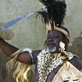 Zulu Pride by Michele Burgess