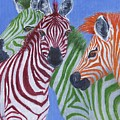Zzzebras by Jamie Frier