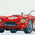 289 Cobra Competition by David Lloyd Glover