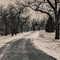 A Winter Park by Edward Peterson