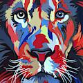 African Lion by Jethro Longwe