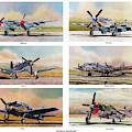 Airshow Warbirds by Douglas Castleman