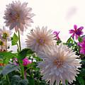 Among The Flowers by Joe Geraci