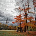 An Autumn Day At Chestnut Ridge Park by Guy Whiteley