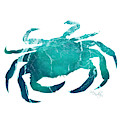 Art Sea Crab In Turquoise by Micki Findlay