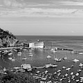 Avalon Harbor - Catalina Island, California by Mountain Dreams