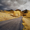 Back Road In Colorado by Jon Glaser