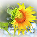 Be The Sunshine by Ola Allen