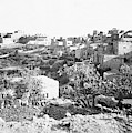 Bethlehem 19th Century by Munir Alawi