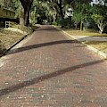 Brick Road In Palatka Florida by Roger Epps