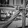 Brooklyn Bridge Love Locks Bw by Susan Candelario