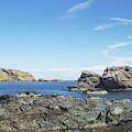 cliffs and coast at St. Abbs, Berwickshire by Victor Lord Denovan