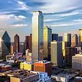 Dallas Vista  by Harriet Feagin