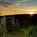 Dartmoor Gate At Sunrise II by Helen Northcott