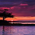 Detroit Point September Sunset by Ron Wiltse