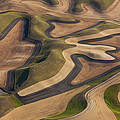 Farmland Landscape, With Ploughed by Mint Images - Art Wolfe