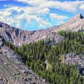 Gallatin National Forest by Anthony Dezenzio