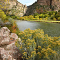 Glenwood Canyon Fall Colors by Ray Mathis