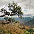 Hells Canyon Panoramic by Leland D Howard