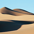 Khongoryn Els Sand Dunes In Southern by David Tipling