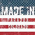 Made In Paradox, Colorado by Tinto Designs