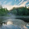 Midsummer's Morning by Anita Raunio