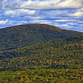 Mount Everett From Bear Mountain by Raymond Salani III