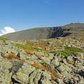 Mount Washington - New Hampshire, White Mountains by Erin Paul Donovan