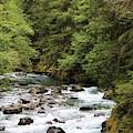 Ohanapecosh River by Lkb Art And Photography