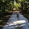 Dirt Road by Roger Epps
