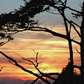 Oregon Coast Sunset by Tom Janca