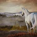 Overlook by Melinda Hughes-Berland